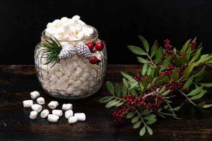 mini marshmallows de vainilla